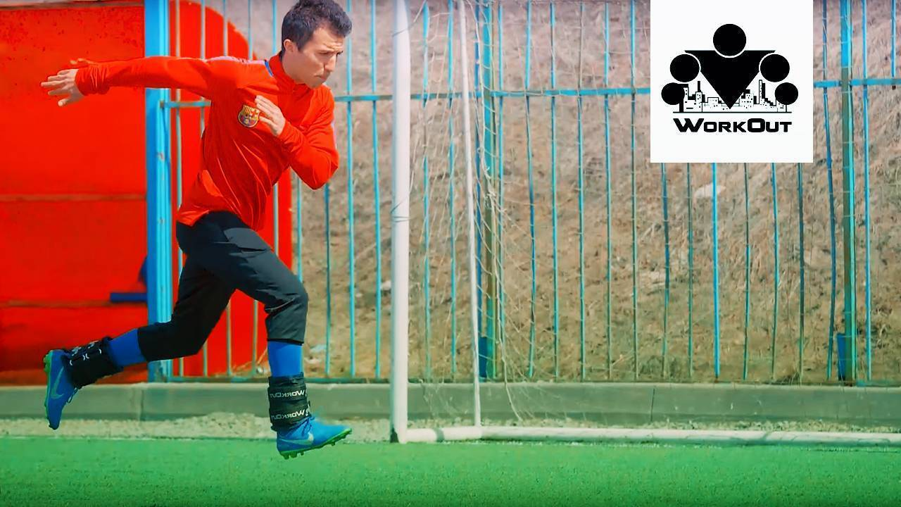 Топ-50 самых эффективных упражнений для ног в домашних условиях + готовый план упражнений
