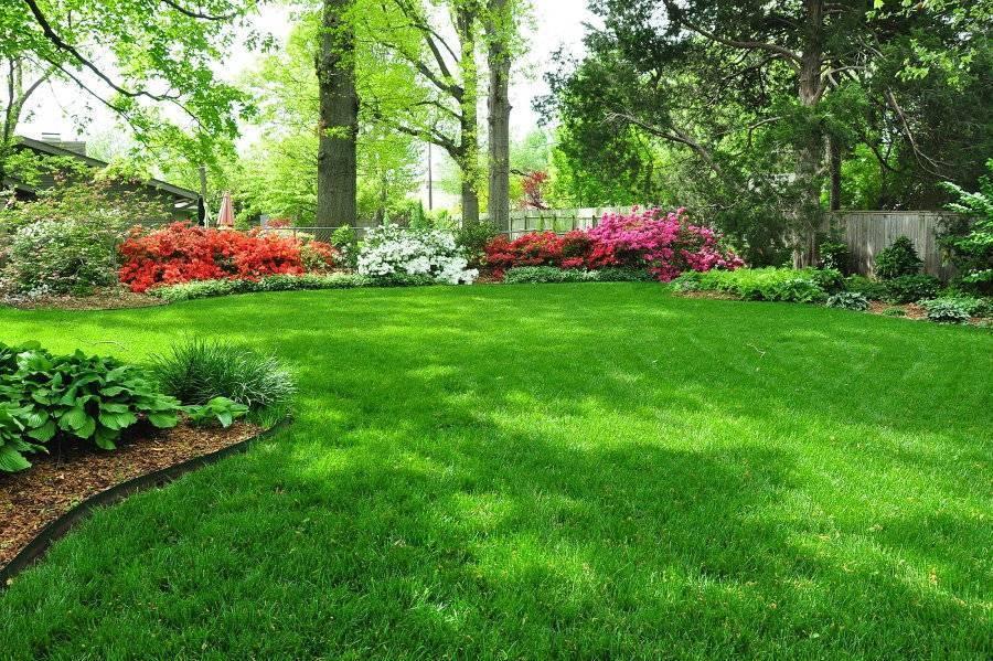 Искусственный газон: виды покрытия и особенности самостоятельной укладки