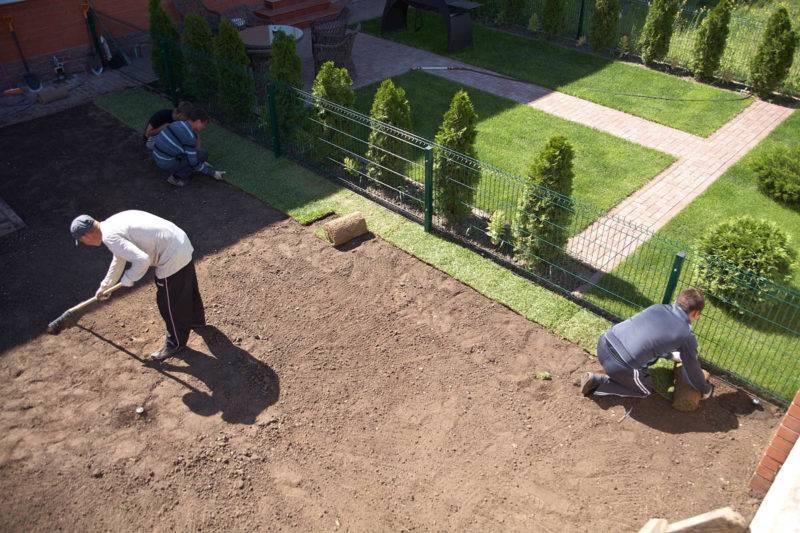 Укладка искусственного газона — выбор газона, инструкция по укладке своими руками с советами для начинающих + 160 фото