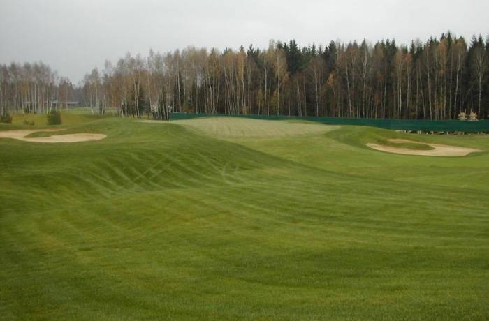 Искусственный газон для футбольного поля: описание и характеристики
