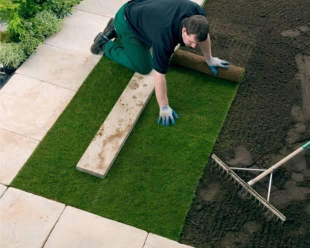 Искусственный газон: примеры применения в саду + пошаговая технология укладки