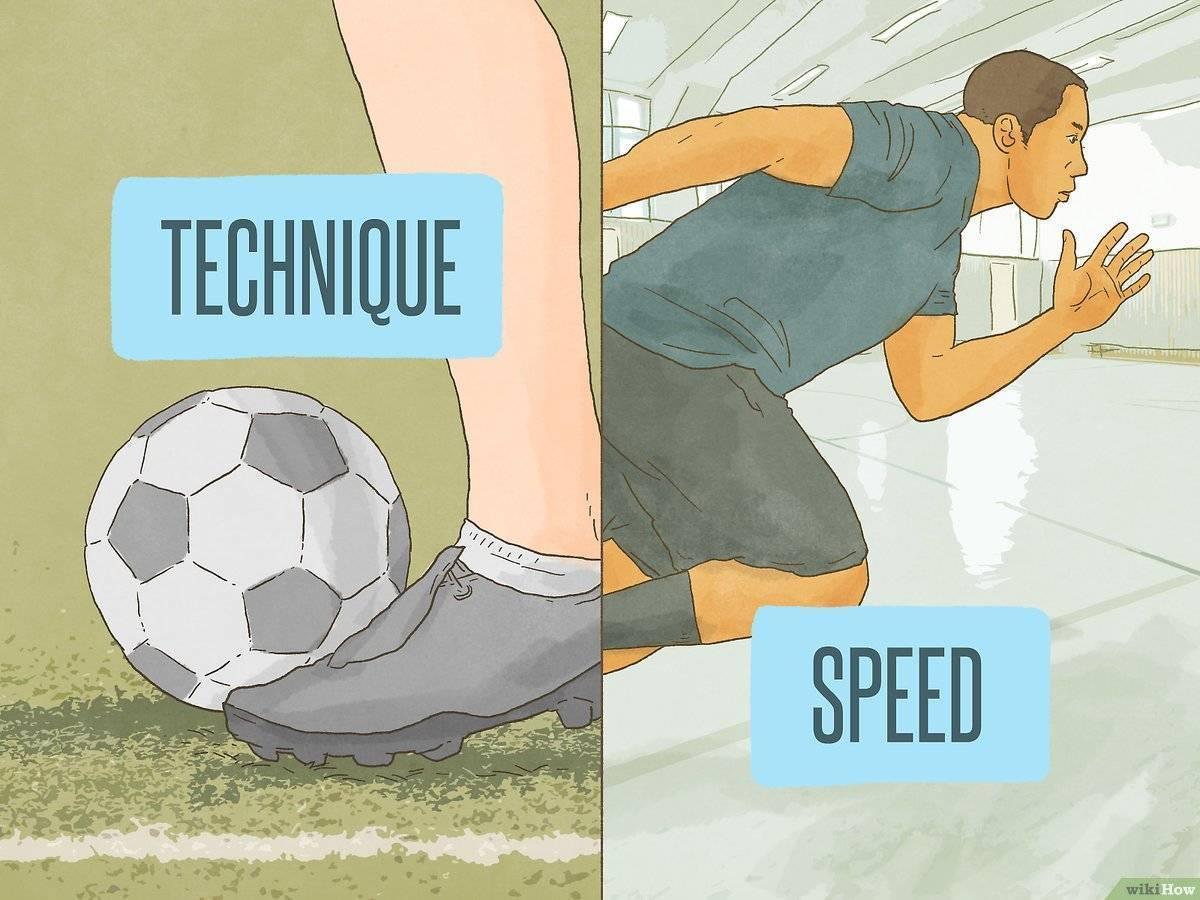 Тренировка ног. лучшиеупражнения на ноги в тренажерном зале