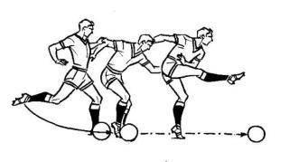 Каталог статей о спорте и здоровом образе жизни