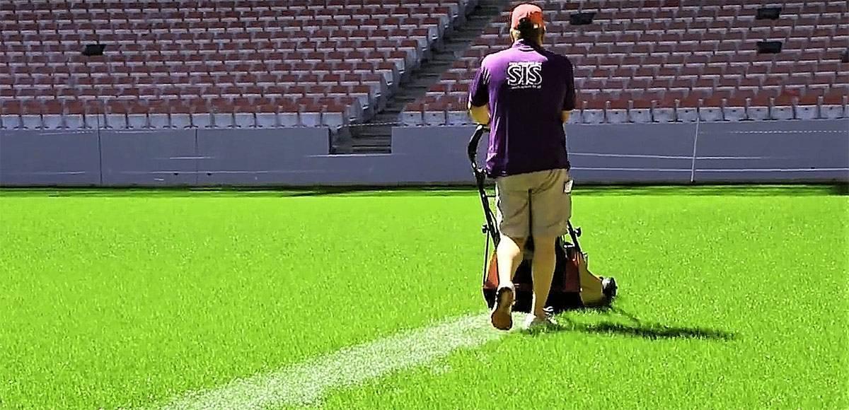 Почему футбольное поле полосатое, а также как и зачем делают полосы на полях разного цвета. почему футбольное поле полосатое и зачем ему полосы