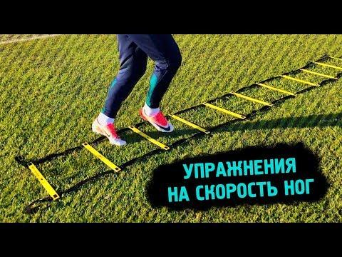 Тренировка ног. лучшие упражнения и примеры схем тренировочной программы