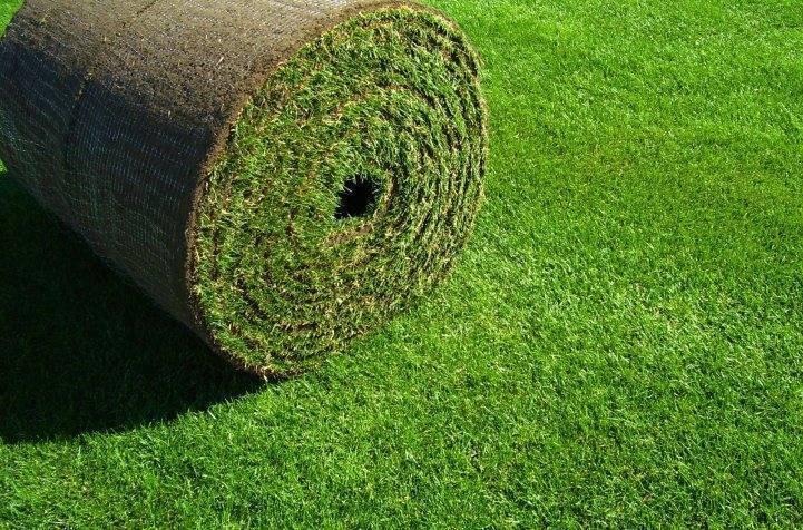 Искусственный газон и актуальность его применения при обустройстве футбольных площадок